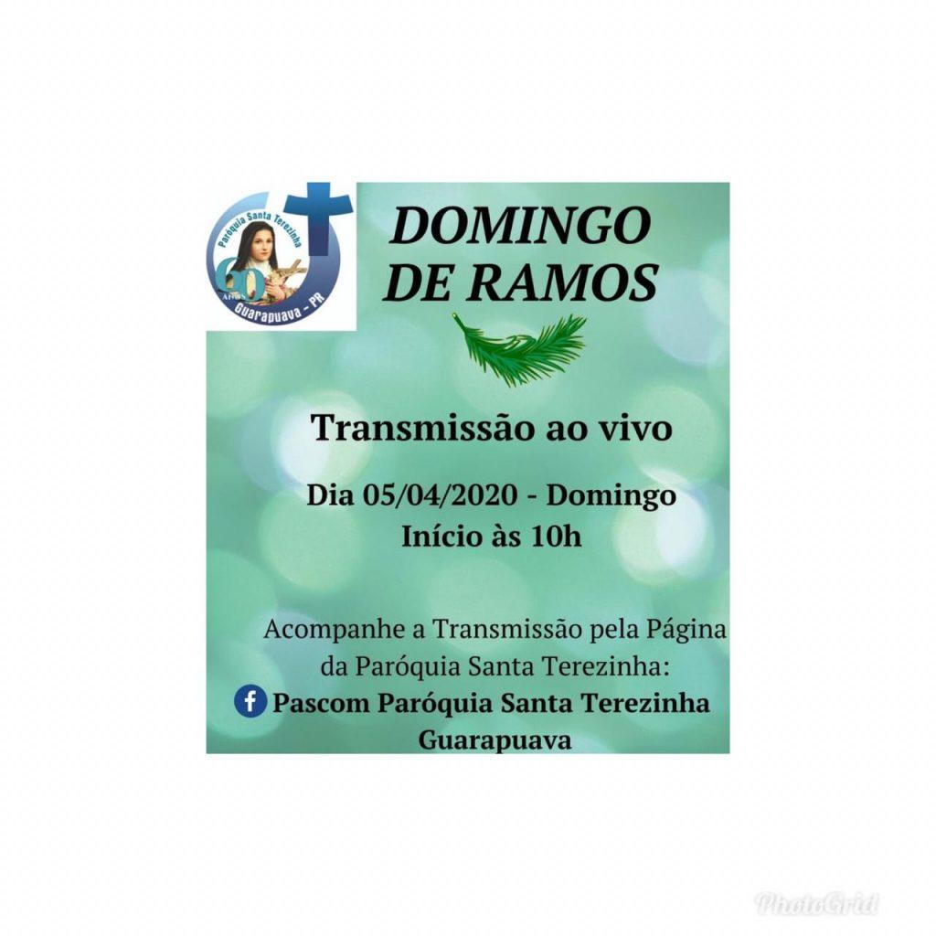 Santa Missa no Domingo de Ramos será transmitida ao vivo pelo Facebook